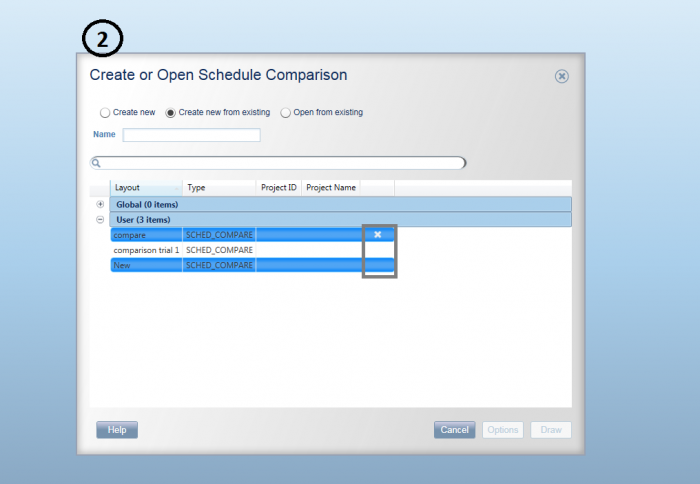 visualizer layout error project controls planning scheduling